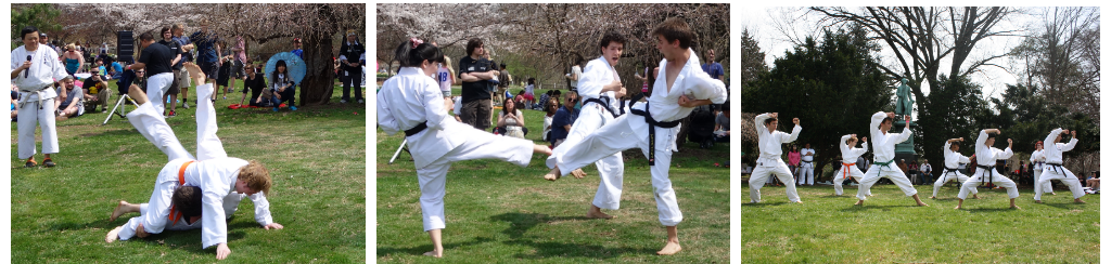 A horizontal row of three pictures. In the first picture there are two Temple University Karate Club members are competing against each other; on is on the ground while the other member is on top of him and pinning him down. In the second picture there are three members formed in a triangle kicking into the center. The third picture displays all of the club members lined up during an instructional session outside.